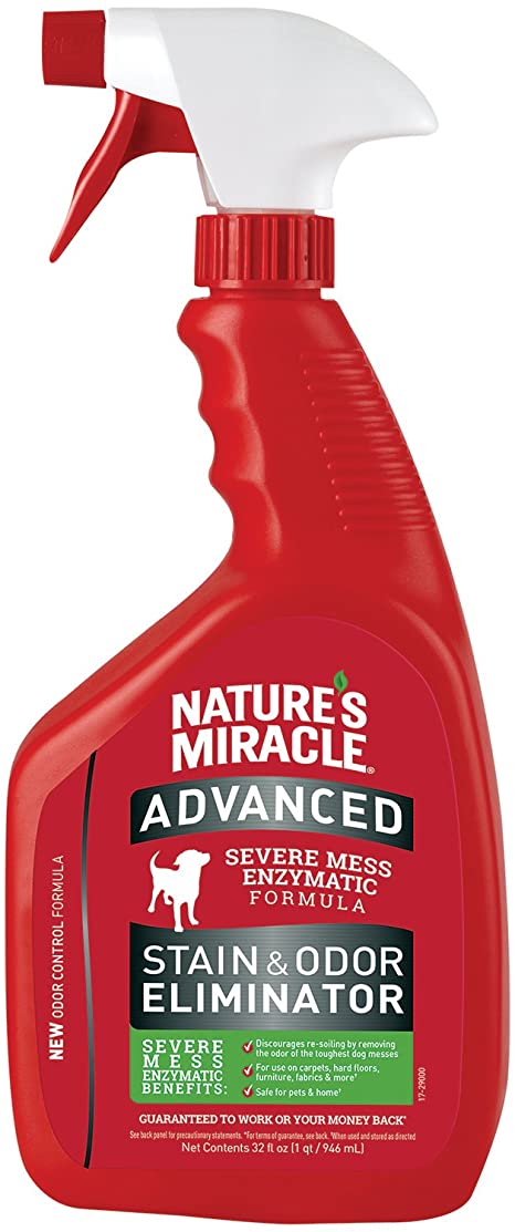 Oder and Stain remover for cat