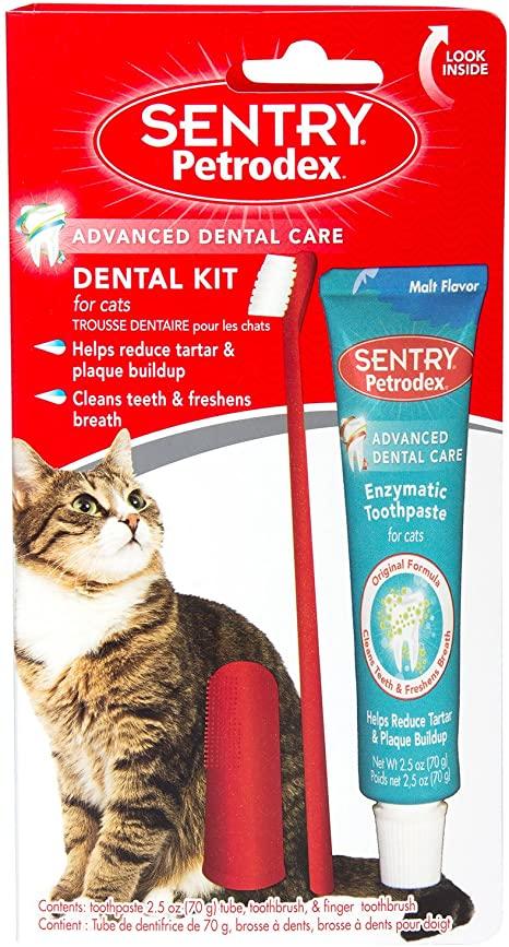 Dental Kit for cat