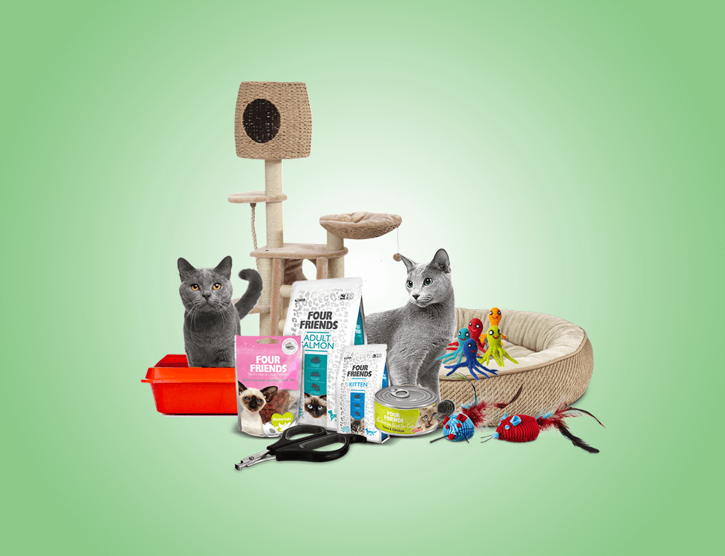 13 Best Supplies To Stock Up For Your Russian Blue Cat