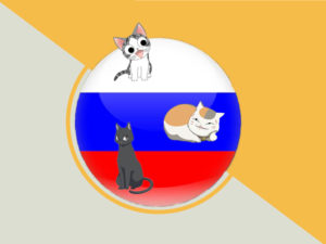 Cats From Russia